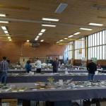 Skytteholsskolans sporthall erbjuder rejäla ytor för utställningen.